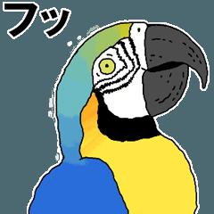 鳥が好き2