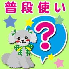 普段使い【トイプードル/シルバー】