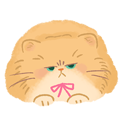 関西のペルシャ猫