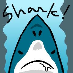 [LINEスタンプ] なんかサメ