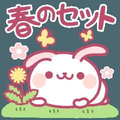 ❤️春のセット【たれ耳うさぎ】