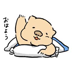 ウォンバットのうぉん(日常)