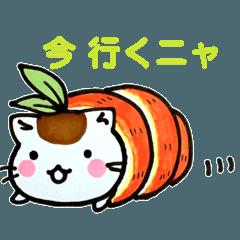 ぱっぱネコ