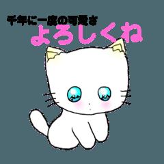 千年に一度の甘え猫