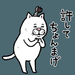目付きの悪いネコ【ダジャレ】