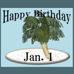 南の島から<1月誕生日>