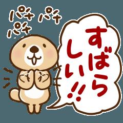 突撃!ラッコさん 丁寧なデカ文字編